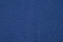 Ostrich Skin Matte Mod Blue