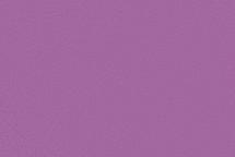 Cow Suede Lavender