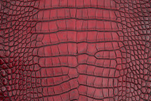 Alligator Skin Belly Vintage Red 25/29 cm Grade 4