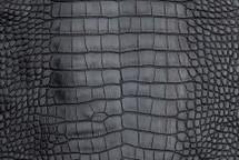 Alligator Skin Belly Vintage Navy 25/29 cm Grade 4