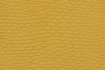 Beaver Tail Matte Yellow