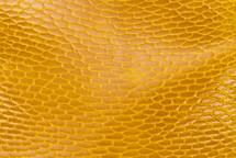 Beaver Tail Glazed Yellow
