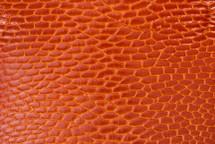Beaver Tail Glazed Orange