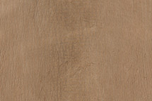 Shark Skin Matte Beige - Low Grade