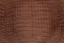 Caiman Skin Belly Vintage Cognac