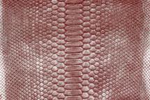 Python Skin Crisp Silver/Red