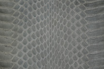 Whipsnake Skin Glazed Grey
