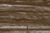 Ostrich Leg Panel Brown