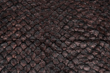 Arapaima Skin Fusion Bronze/Black