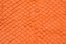 Arapaima Skin Glazed Orange