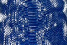Python Skin Crisp Silver/Cobalt