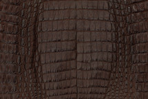 Caiman Skin Belly Matte Brown - XL