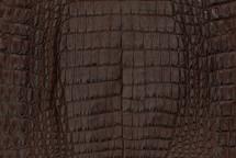 Caiman Skin Belly Matte Brown - XL