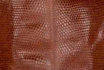 Lizard Skin Glazed Brandy
