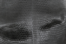 Lizard Skin Glazed Charcoal