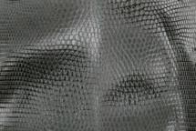Lizard Skin Glazed Coriander