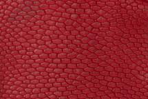 Beaver Tail Semi-Matte Red