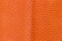 Beaver Tail Semi-Matte Orange