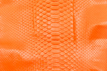 Python Skin Long Back Cut Neon Orange
