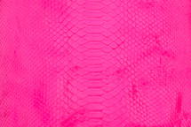 Python Skin Long Back Cut Neon Pink