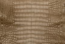 Alligator Skin Belly Matte Mink 30/34 cm Grade 4