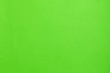 Lizard Skin Matte Neon Green
