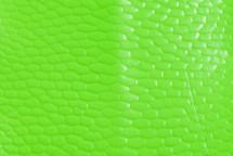 Beaver Tail Glazed Neon Green