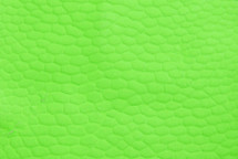 Beaver Tail Matte Neon Green
