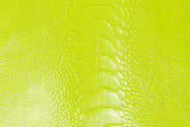 Ostrich Leg Glazed Neon Yellow