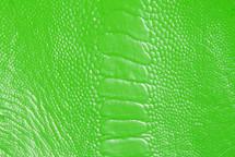 Ostrich Leg Glazed Neon Green