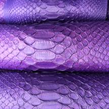 Dark Violet Python