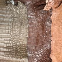 Saddle Alligator Skin