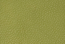 Leather Pebbled Pea Green