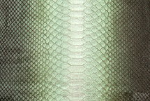 Python Skin Long Aspen Beige