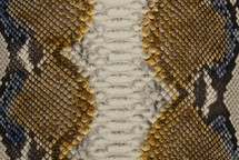 Python Skin Long Renaissance Yellow