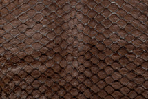 Arapaima Skin Glazed Dark Tobacco