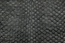 Arapaima Skin Glazed Grey