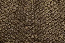 Arapaima Skin Rustic Sanded Tobacco
