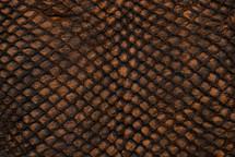 Arapaima Skin Rustic Cognac