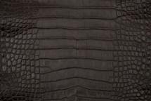 Alligator Skin Belly Matte Brown 30/34 cm