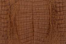 Caiman Skin Belly Matte Cognac