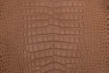 Alligator Skin Belly Matte Cognac 35/39 cm