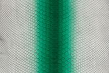 Python Skin Long Moretta Green
