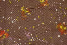 Python Skin Long Nemo Brown