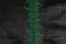 Python Skin Long Spirit Green
