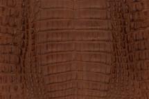 Caiman Skin Belly Matte Saddle