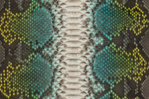 Python Skin Long Miku Green
