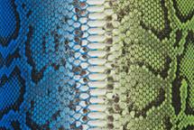 Python Skin Long Bifas Blue