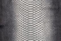 Python Skin Long Mercurio Silver