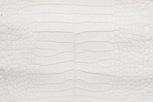 Alligator Skin Belly Matte White 30/34 cm